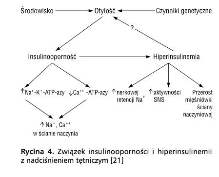 hiperinsulinemia insulinooporność