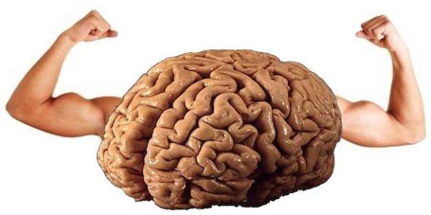 mocny mózg