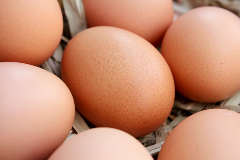 jaja dietetyczne