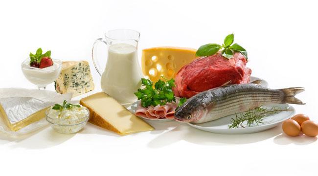 proteiny dieta
