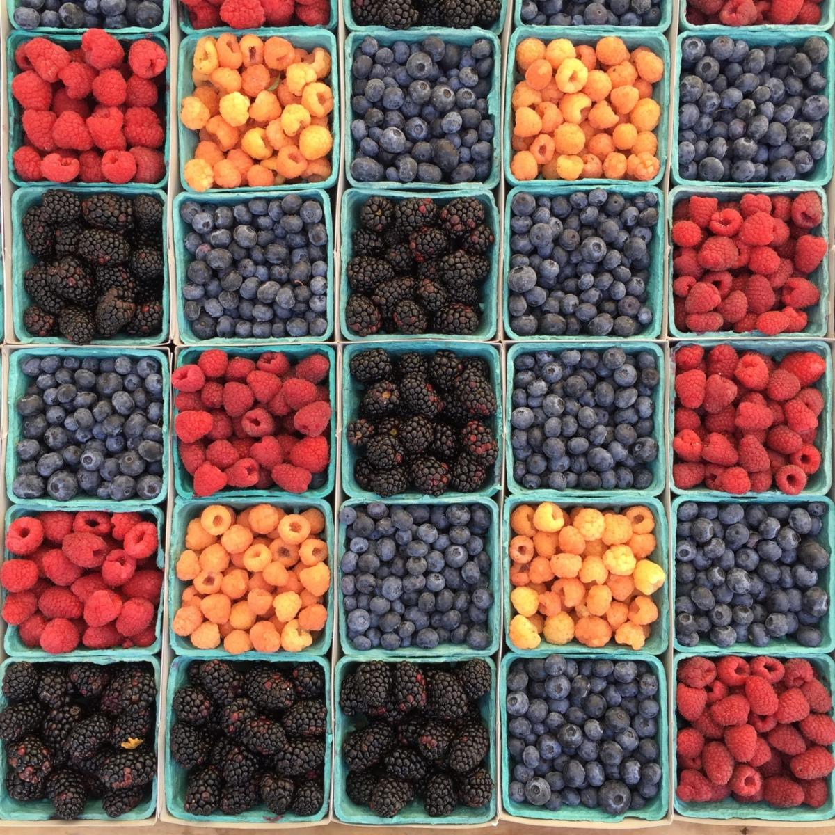Kolorowe owoce wkwadratowych pojemnikach