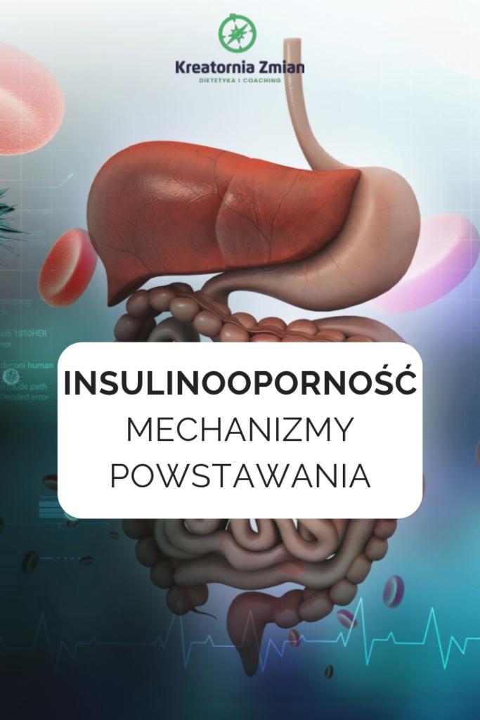 insulinoopornosc mechanizmy powstawania